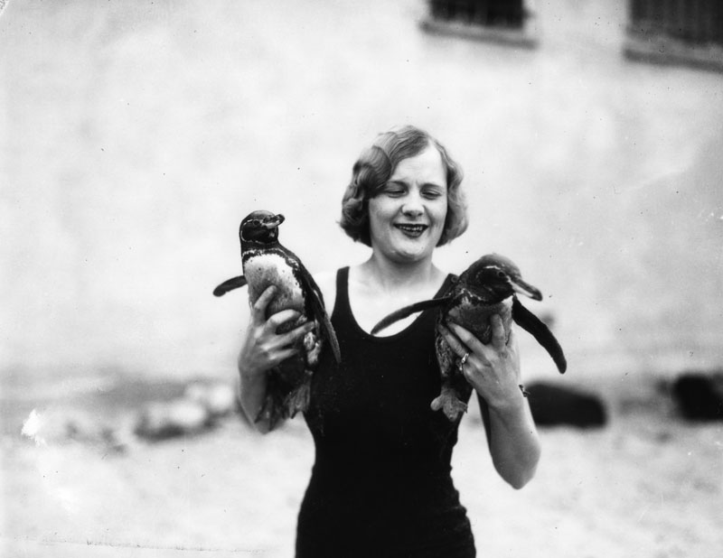 00064425 woman with penguins