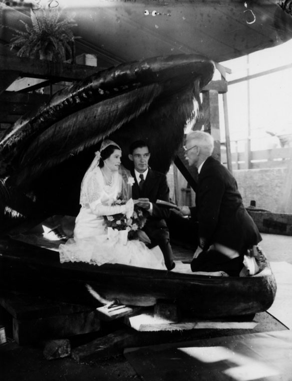 wedding in a whale