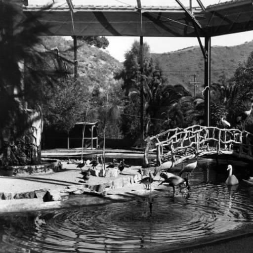santa catalina bird park