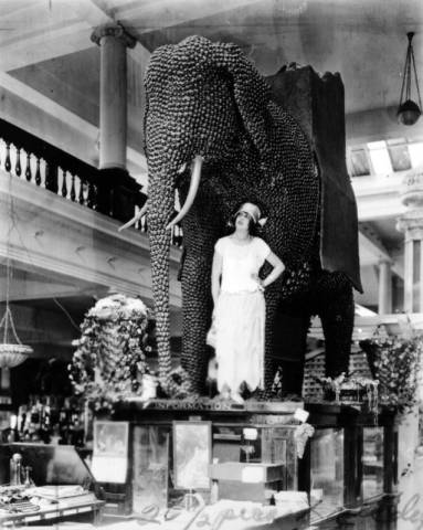 mabel normand and walnut elephant