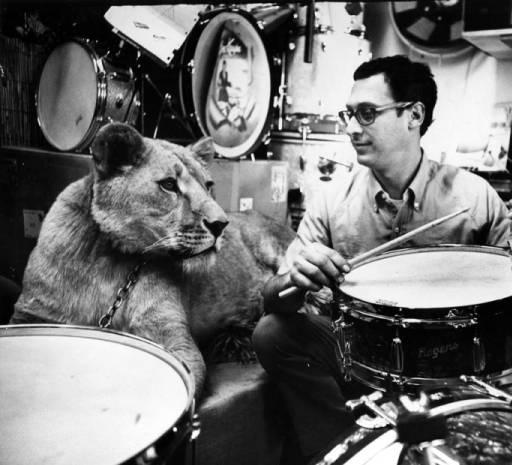frank's drum shop